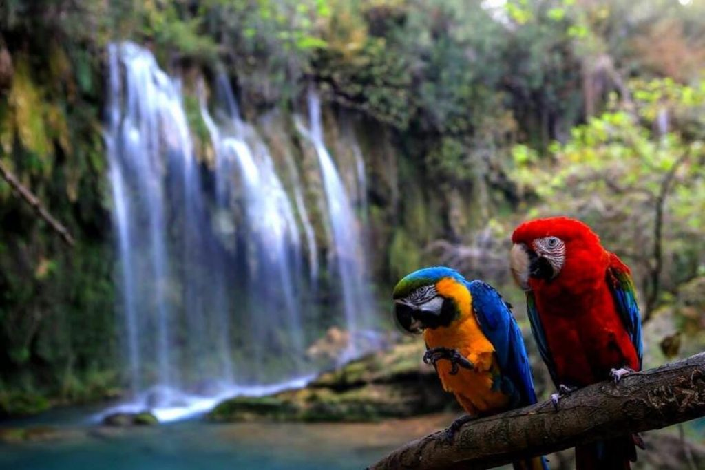 antalya kursunlu waterfall tour