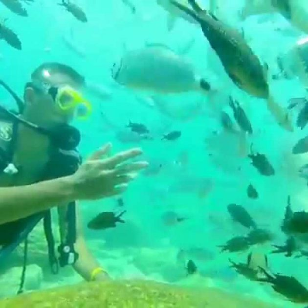 scuba diving antalya turkey